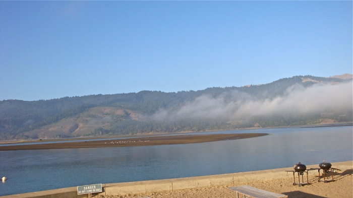 Another view from the gated enclave, looking onto Bolinas Lagoon: should that sign actually say, 'DANGER: FRAGILE SEPTIC SYSTEMS'?